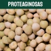proteaginosas-textoM
